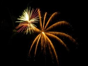 1375941_fireworks_7.jpg