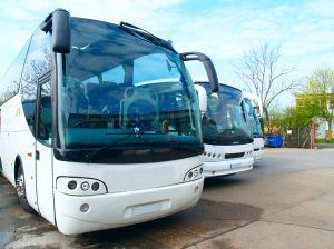 922577_coaches.jpg