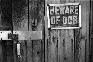 bewaredog.png
