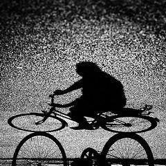 bikeshadow.jpg