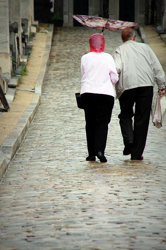 oldfriendswalking.jpg
