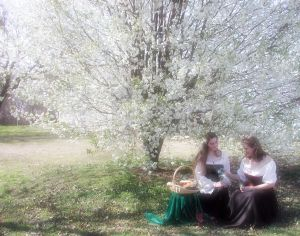 picnic-305483-m.jpg