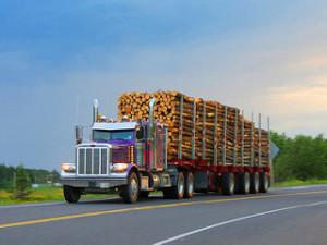 trucklogs