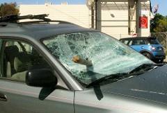 windshield (2)