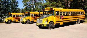 800px-NS_-_School_bus